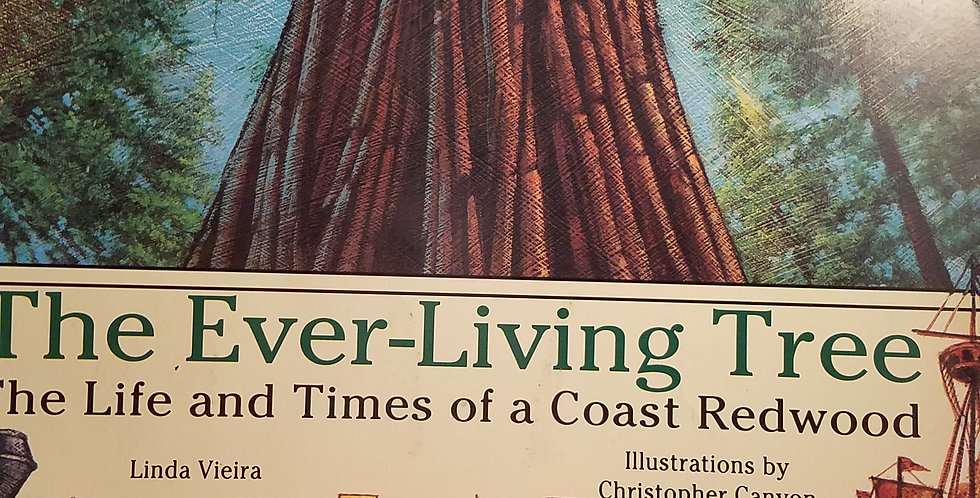 Ever-Living Tree the life and Times of a Coast Redwood (Trumpet Special Edition)