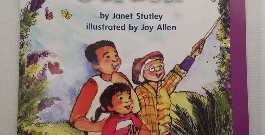 A Special Garden by Janet Stutley