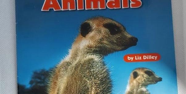Kalahari Desert Animals by Liz Dilley