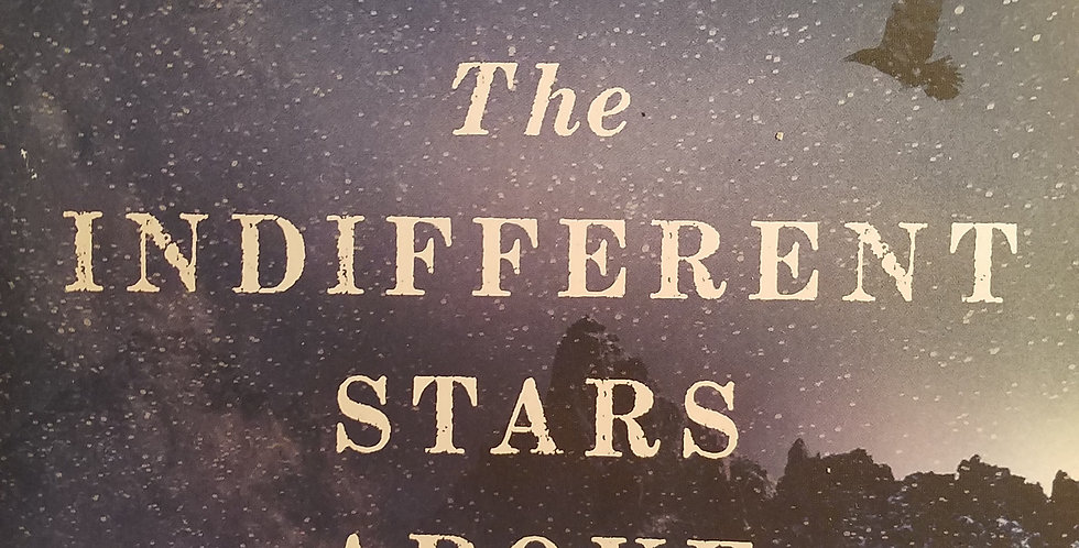 Indifferent Stars Above The Harrowing Saga of the Donner Party by Daniel James B
