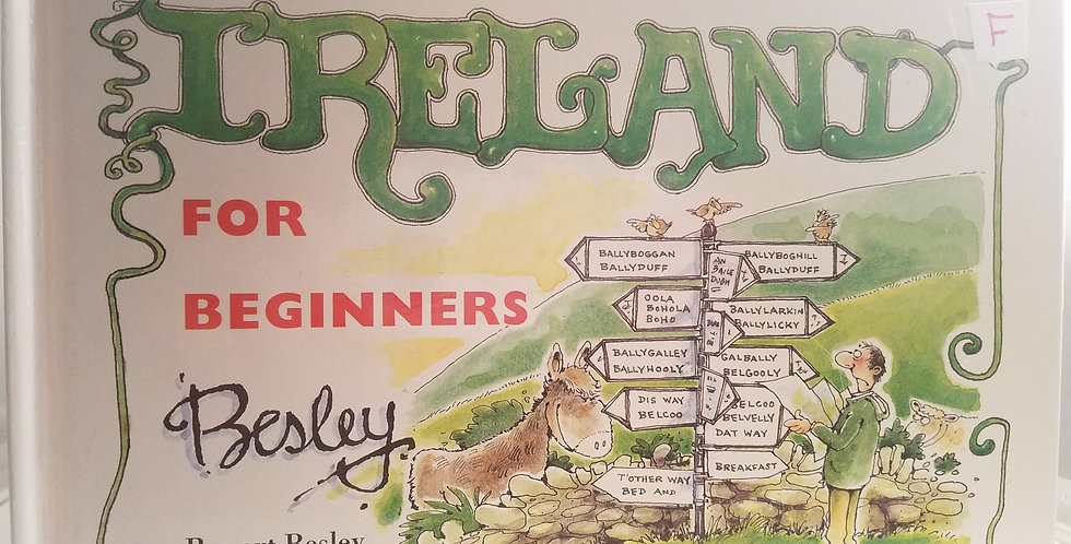 Ireland for Beginners by Rupert Besley