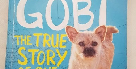 Finding Gobi The True Story of one Little Dog's Big Journey by Dion Leonard