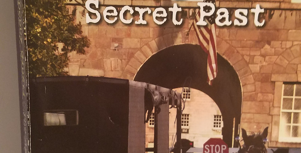 Agent's Secret Past, (#6) by Debby Giusti (large print)