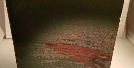 Red Kayak by Priscilla Cummings