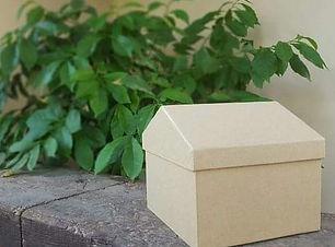 תמונה לקוביה ראשית.jpg
