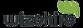 Wizehire Logo 2.png