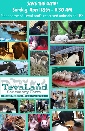TevaLand Nefesh Save the Date.png