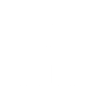 RODA LOGO BLACK CARD KNOCKED OUT.png