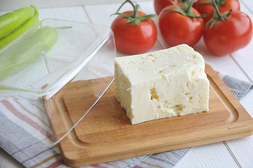 Bambum Novita Cheese Dome Set - (B2274)
