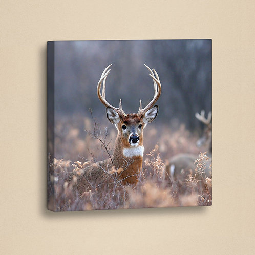 Dekorjinal Single Piece Artificial Leather Canvas Print