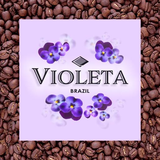 スミレの花のようなコーヒー豆『ヴィオレッタ』