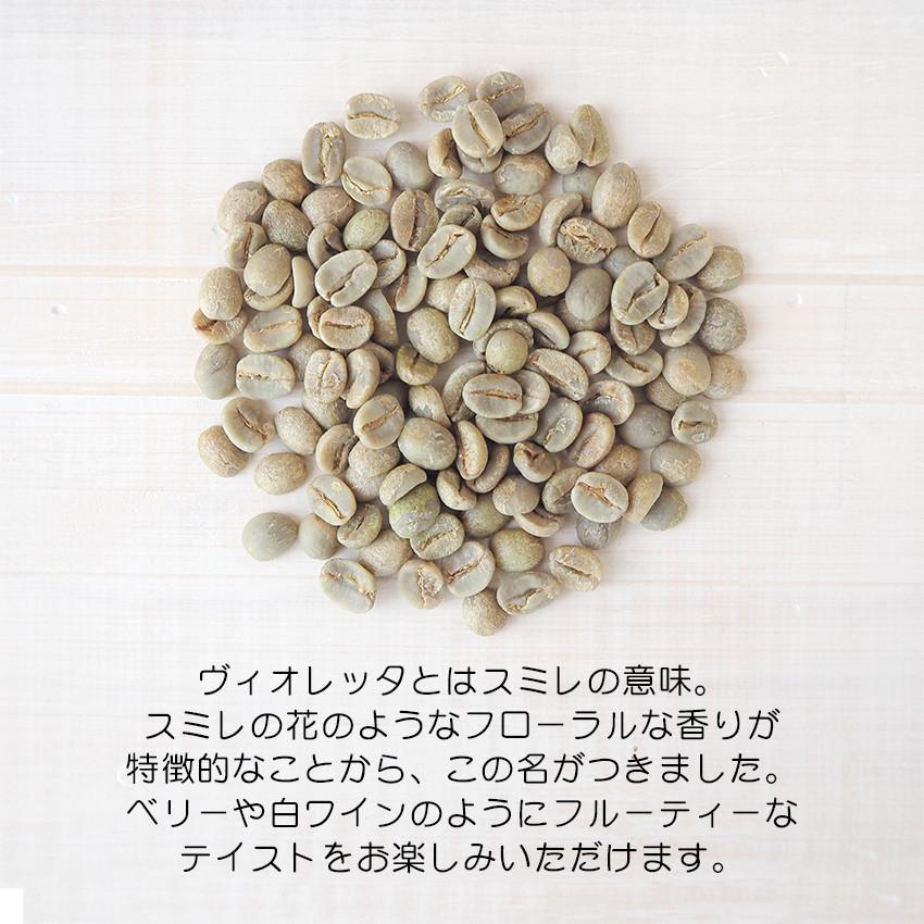 コーヒー豆『ヴィオレッタ』の生豆。しっとりとした印象のコーヒー豆です。