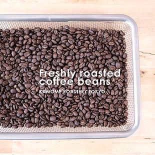 焙煎したての新鮮なコーヒー豆