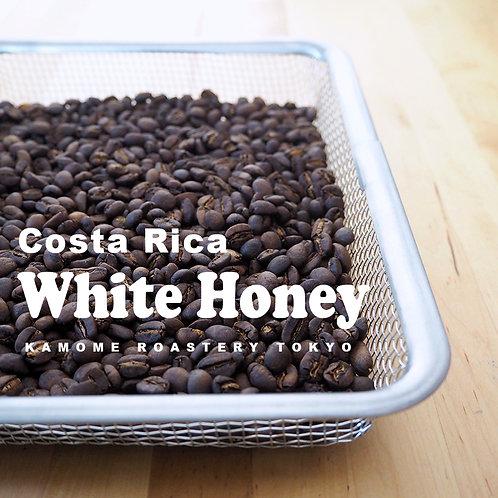 コーヒー豆『ホワイトハニー』の写真