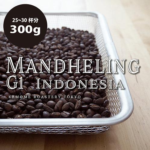 マンデリン『スマトラ島』 コーヒー豆300g 【受注後焙煎】