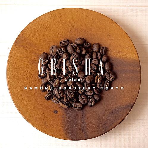 『ゲイシャ』コーヒー豆の写真