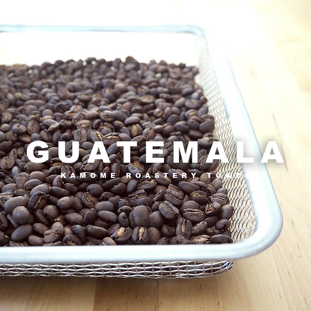 焙煎したてのグアテマラのコーヒー豆