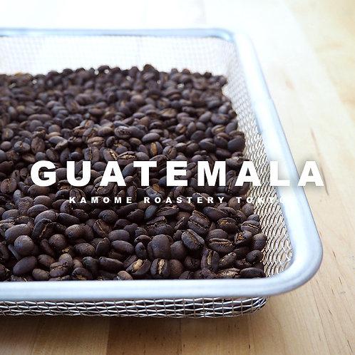 グァテマラコーヒー豆の写真
