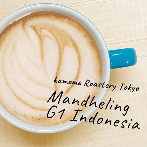 おすすめ!スペシャルティコーヒー『マンデリン』