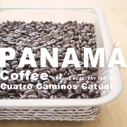 パナマのコーヒー豆の写真
