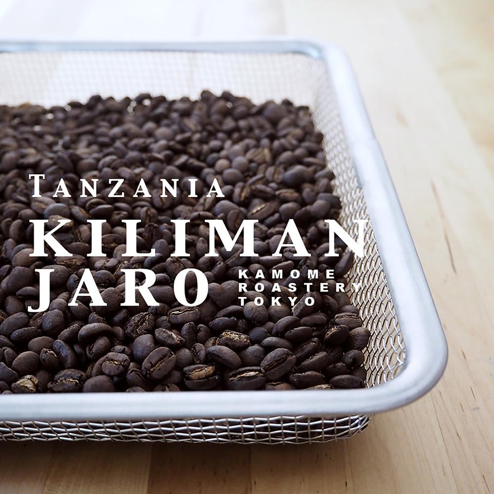 キリマンジャロコーヒー豆。缶コーヒーでは味わえない、キリマンジャロ本来の味をお楽しみください。