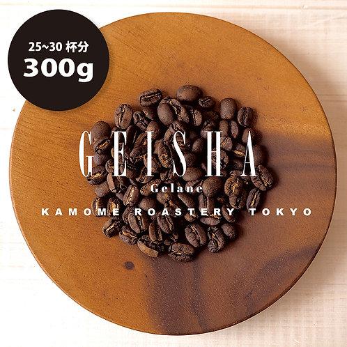 エチオピア『ゲイシャ』コーヒー豆