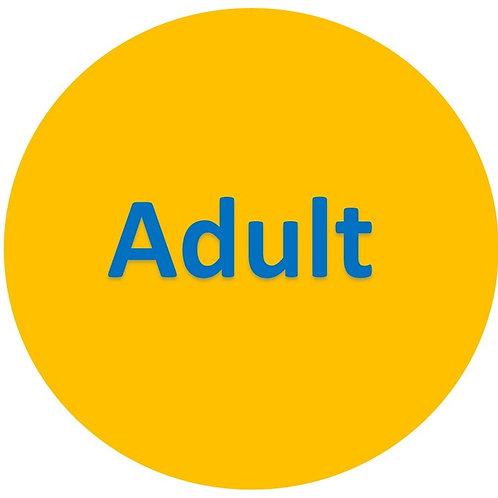 Adult Admission Ticket