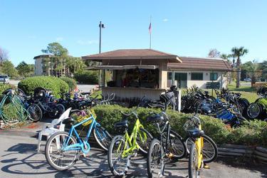 Bike rentals.jpg