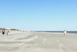 Expansive Folly Field Beach
