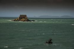 photographe-paysages-reportage-mer-saint-malo-bretagne-260
