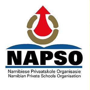 NAPSO_logo design.jpg
