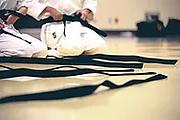 Karate Black Belt.jpg