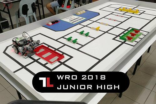 WRO 2018 Junior High - 39/50sec (2 NXT light sensor)