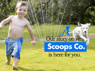 Scoops Co's Story.