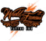 WFTI_logo_blackbg_250.png
