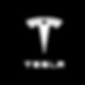 Trendgroup_Clients-Trnsp_Testla logo.png
