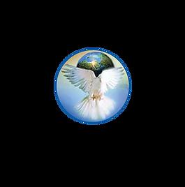 paloma logo.png