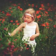 SME Kitafotografie.jpg