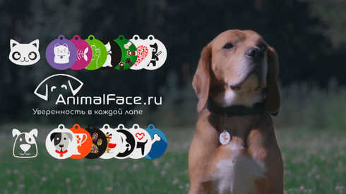 Music & Sound Production Animal Face