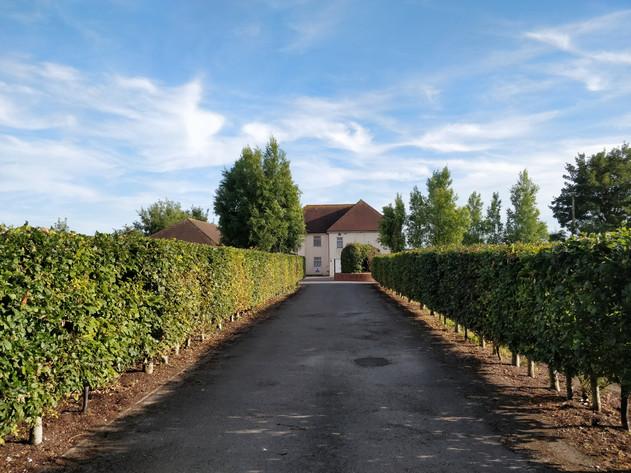 Chilcomb Down House Entrance