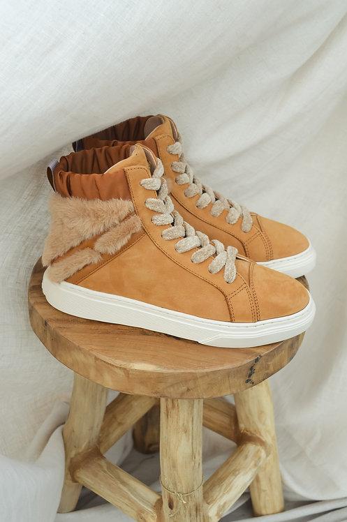 Hogan H366 camel sneakers
