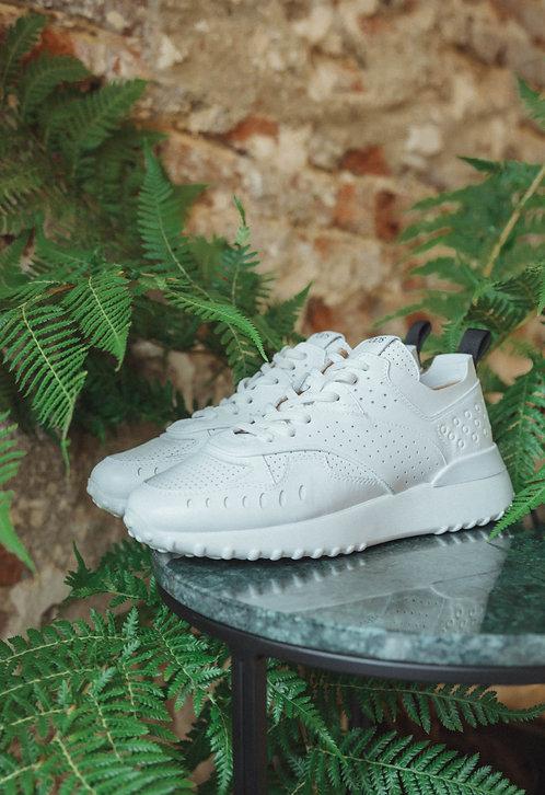 Tod's sneaker white