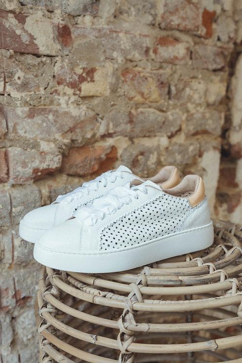 Fratelli Rossetti sneaker white/camel