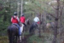Horseback riding half-day trek