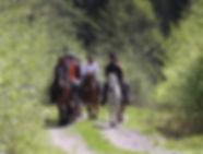 Horseback riding 1 hour trek