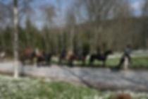 Horseback riding Gourmet treks