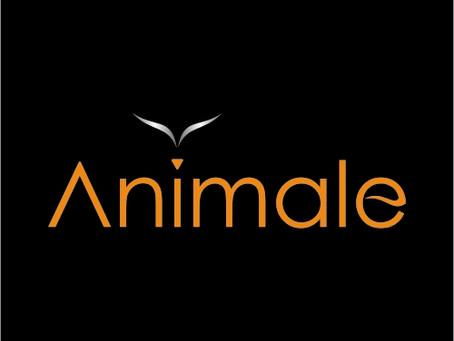 Animale contrata Vendedor-Vila Velha
