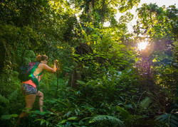 Treks in the Jungle 3-5 hrs with your own local guide