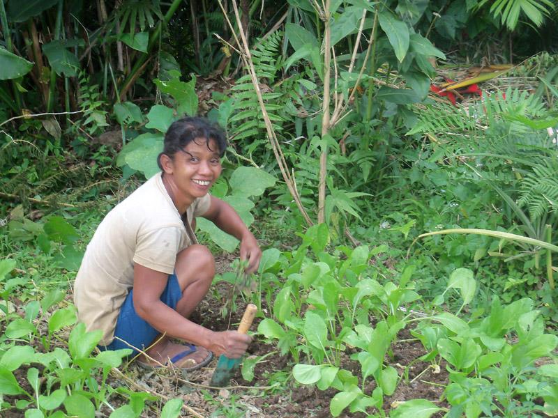 ibu wili garden small