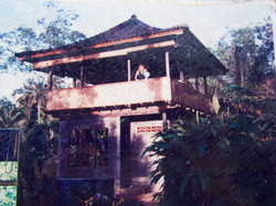 Jungle Bungalow being built